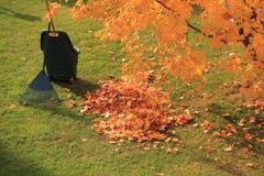 Fogli e rastrello dei morti di autunno Fotografia Stock
