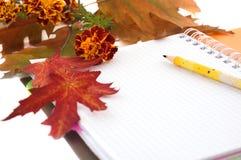 Fogli e taccuino di autunno Fotografia Stock Libera da Diritti