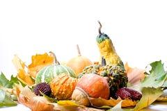 Fogli e verdure della frutta Immagini Stock Libere da Diritti
