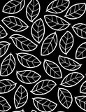 Fogli - reticolo senza giunte floreale Fotografie Stock Libere da Diritti