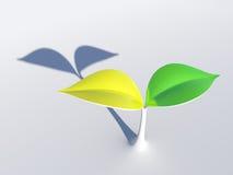 Fogli verdi e gialli Fotografia Stock Libera da Diritti