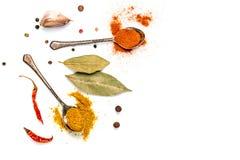 Foglia, aglio e peperoncino di alloro su un fondo bianco Fotografia Stock