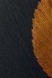 Foglia asciutta di autunno su struttura del fondo della pietra nera Fotografia Stock