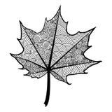 Foglia in bianco e nero di Zentangle dell'acero dell'albero fotografie stock libere da diritti