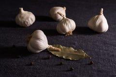 Foglia, cipolla ed aglio di alloro sul piano d'appoggio scuro del tessuto Preparato asciutto delle spezie Immagini Stock Libere da Diritti