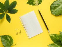 Foglia del blocco note con la matita nel centro su fondo giallo con le foglie verdi Fotografie Stock