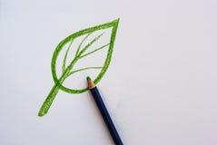 Foglia del disegno della mano con la matita Fotografia Stock Libera da Diritti