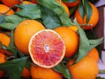 Foglia dell'arancia sanguinella Immagini Stock