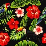 Foglia della banana del tucano del pappagallo dell'ibisco Immagine Stock Libera da Diritti