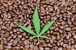 Foglia della cannabis su caffè Fotografie Stock Libere da Diritti