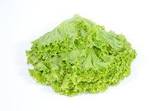 Foglia della lattuga su fondo bianco, ingrediente dell'insalata fotografie stock