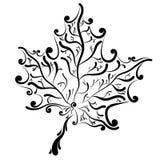 Foglia di acero decorativa Immagine Stock