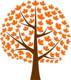 Foglia di acero dell'albero di acero illustrazione di stock