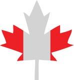Foglia di acero della bandierina del Canada Immagine Stock