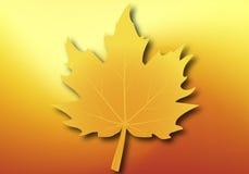 Foglia di acero gialla sul fondo di autunno Fotografia Stock