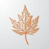 foglia di acero realistica 3d Versione di vettore royalty illustrazione gratis