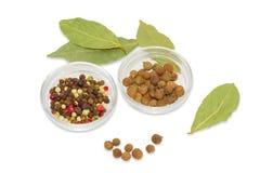 Foglia di alloro secca, contenitori di vetro con pepe e quattro spezie Fotografia Stock