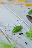 Foglia di alloro su fondo di legno bianco con le verdure Fotografie Stock Libere da Diritti