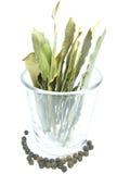 Foglia di alloro in un vetro Fotografie Stock