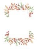 Foglia di Autumn Fall Leaves Flowers Berry dell'intestazione della struttura delle bacche dell'acquerello Immagine Stock Libera da Diritti