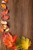 Foglia di autunno su fondo di legno Fotografia Stock
