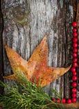 foglia di autunno su legno fotografia stock libera da diritti