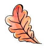 Foglia di autunno di una quercia watercolor Fotografie Stock Libere da Diritti