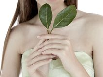 Foglia di modello di verde della tenuta della donna per la natura di salute di bellezza dei gioielli pulita fotografia stock