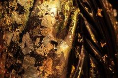 Foglia di oro su Budda immagine stock