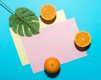 Foglia di palma tropicale con l'arancia affettata su fondo blu luminoso Composizione minima in estate Disposizione piana fotografia stock libera da diritti
