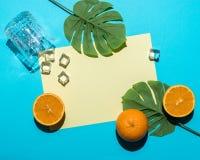 Foglia di palma tropicale con l'arancia affettata su fondo blu luminoso Composizione minima in estate Disposizione piana fotografia stock