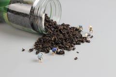 foglia di tè organica e mini agricoltore Fotografie Stock Libere da Diritti