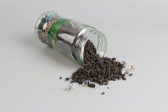 foglia di tè organica e mini agricoltore Fotografia Stock Libera da Diritti