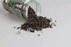 foglia di tè organica e mini agricoltore Fotografie Stock