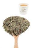Foglia di tè verde con una tazza di tè Fotografie Stock