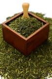 Foglia di tè verde giapponese Fotografie Stock