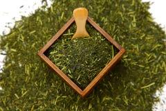 Foglia di tè verde giapponese Fotografia Stock Libera da Diritti