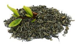 Foglia di tè verde Stagione, naturale fotografie stock