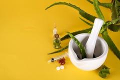 Foglia di vera dell'aloe, mortaio bianco in pieno di aloe tagliato e bottiglie del gel o dell'infusione dell'aloe Immagine Stock