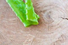 Foglia di vera dell'aloe su fondo di legno Immagine Stock Libera da Diritti