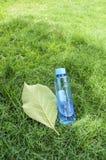 Foglia e bottiglia di acqua verdi Fotografie Stock Libere da Diritti