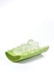 Foglia e fetta di vera dell'aloe isolate su fondo bianco Fotografia Stock