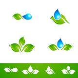 Foglia e goccia di acqua Logo Set Fotografie Stock