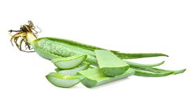 Foglia fresca verde di vera dell'aloe isolata su bianco Fotografia Stock