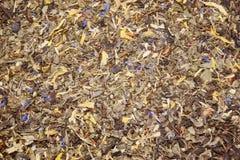 Foglia lunga nera del tè con le bacche del lampone, foglie della mora immagini stock