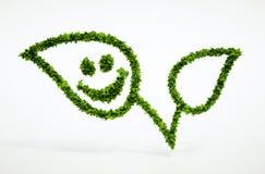 Foglia naturale di Eco con lo smiley Fotografia Stock