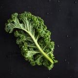 Foglia organica verde fresca del cavolo Fotografie Stock Libere da Diritti