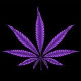 Foglia porpora astratta della marijuana fotografie stock