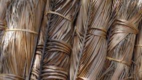 Foglia secca della noce di cocco in pacco Fotografie Stock
