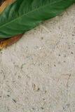Foglia sopra la sabbia Immagine Stock